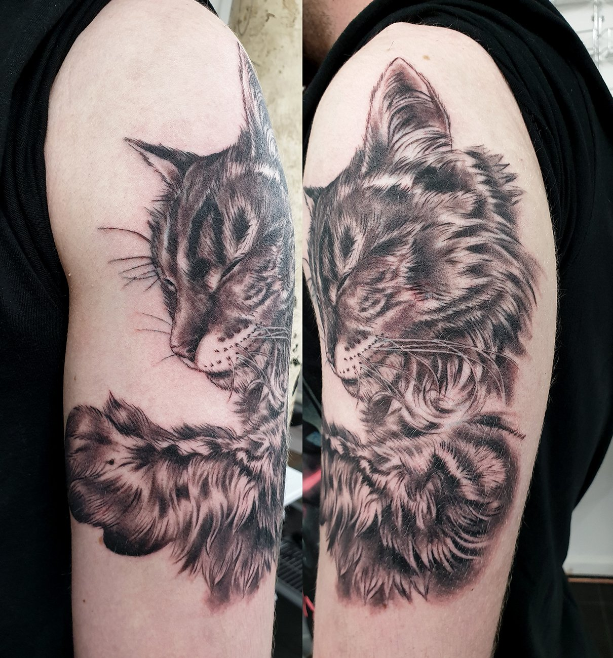 cat pet portrait realism tattoo manchester