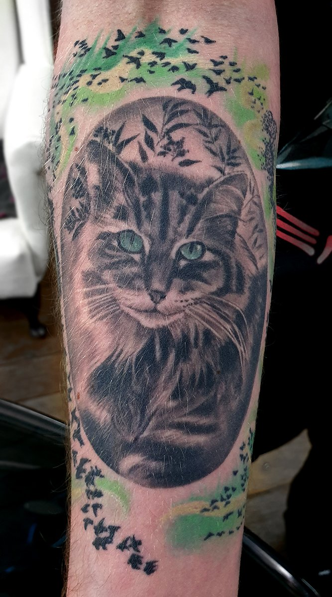 cat pet portrait tattoo realism colour
