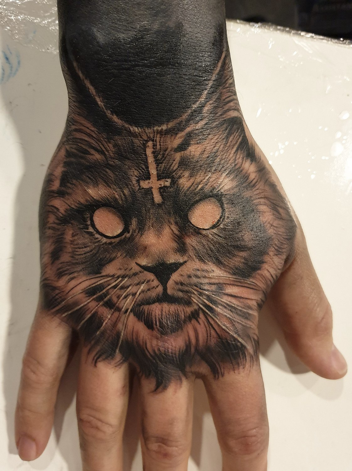 maine coon cat hand tattoo manchester studio